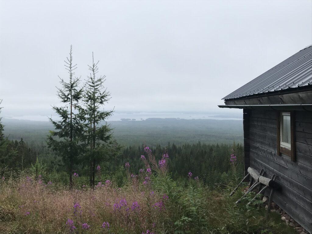 Timmerstuga på Kolberget med utsikt över Orsasjön